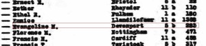 ONS_B19111AZ-1305 - evangeline stephens birth 1911