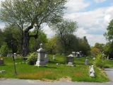 Why I Love Cemeteries